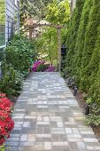 picture of azalea  - Garden Brick Paver Path Walkway with Wood Arbor Landscape Light Trees and Flowering Plants - JPG