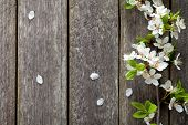 pic of orchard  - Spring flowers on wooden table background - JPG