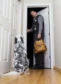 stock photo of dog-house  - A man leaving for work asks his dog to behave and watch the house - JPG