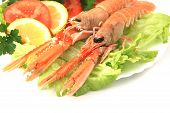 pic of norway lobster  - Plate of Norway lobster dinner in a restaurant - JPG