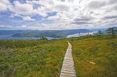 stock photo of bonnes  - Heading down the Signal Hill trail to Bonne Bay in Gros Morne National Park - JPG