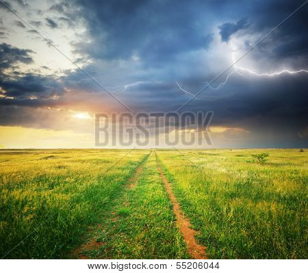 Green meadow and lightning. Composition of nature.