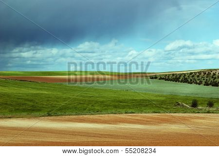 Colorful Country Landscape