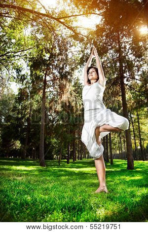 Yoga Tree Pose In The Park