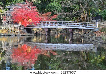 lake and Bridge in Nara, Japan