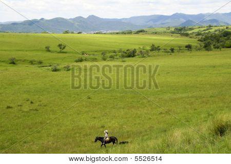 Gaucho in der Nähe von Salta, Argentinien