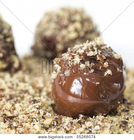 The process of making chocolate truffles. Rolling the truffle in crushed pecans.