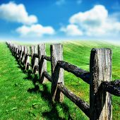 foto of grass area  - Old wooden fence at green summer field
