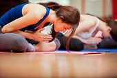 stock photo of yoga mat  - Group of young women relaxing and meditating during their yoga class in a gym - JPG