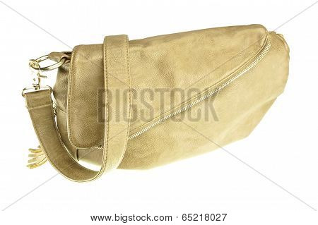 Brown Handbag Isolated