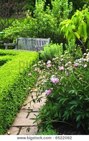 Lush Green Garden