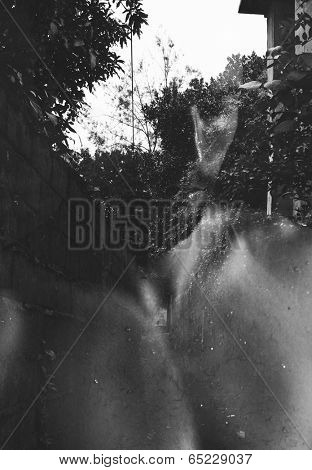 Double exposure portrait of thoughtful man combined with photograph of path