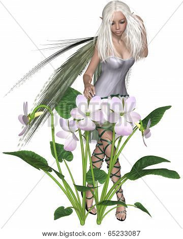 White Violet Fairy