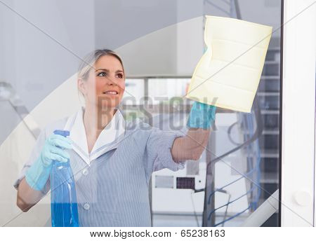 Young Maid With Bottle And Sponge