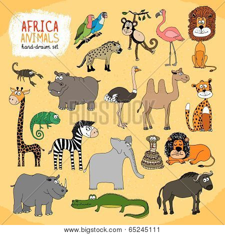 Animals of Africa hand-drawn illustration