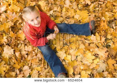 Estado de ánimo de otoño