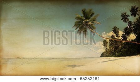 Rustic Textured Parchment of the Beach and Palm Trees