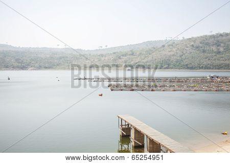 Tilapia Pond In Ghana, West Africa.