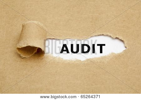 Audit Torn Paper Concept
