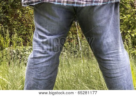 Man Peeing On A Meadow