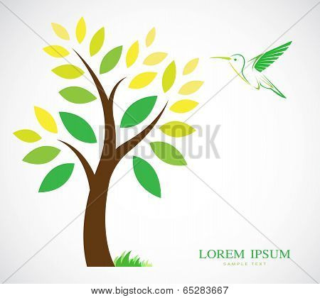 Vector Design Of Trees And Hummingbird