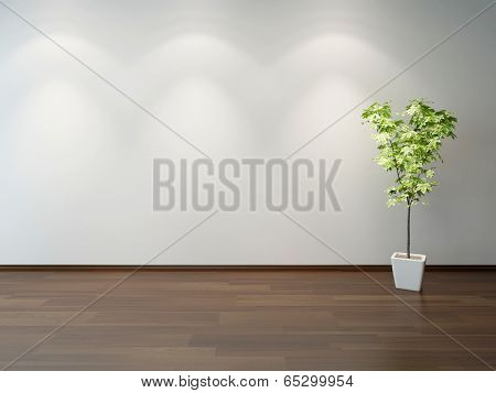 Empty interior with a green decorative plant in a white rectangular ceramic pot on brown wooden parquet floor, and light grey wall