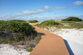 pic of gulf mexico  - Boardwalk at Pensacola Florida beach leads through sand dunes and scrub oaks to the Gulf of Mexico - JPG