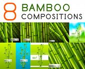 pic of bamboo leaves  - Set of vector nature bamboo designs - JPG