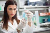 foto of pharmaceutical company  - Scientist at work in a laboratory - JPG