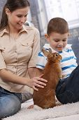 picture of fondling  - Young attractive mother and smiling son playing with cute pet bunny at home - JPG