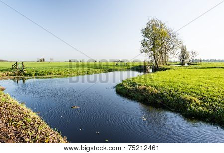 Dutch Polder Landscape In The Fall Season