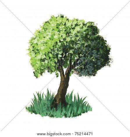 Watercolour vector tree