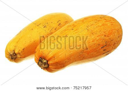 Pair Of Marrow