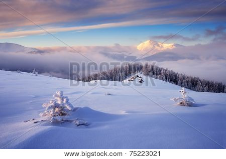 Frosty morning in the mountains. The village of shepherds in the meadow. Fresh snow on the trees and hills. Mountains Carpathians, Ukraine