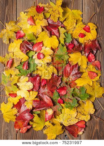 Autumn Leaves On Table