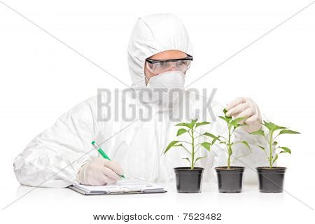 A man in uniform examining a pepper plant and writing down notes