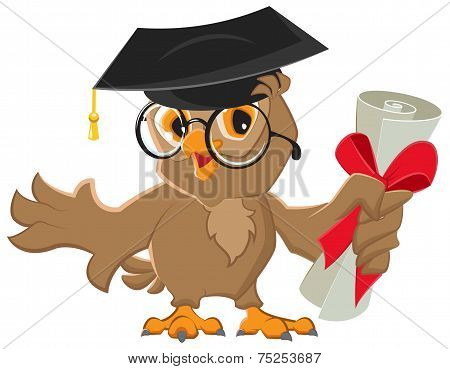 One owl diploma