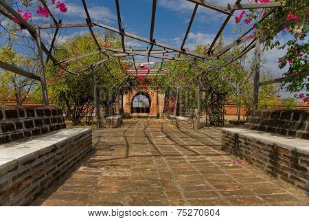 Old Garden In Pagoda,  Bagan