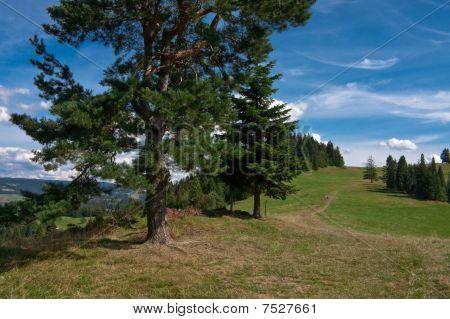 Polish Pieniny Mountains