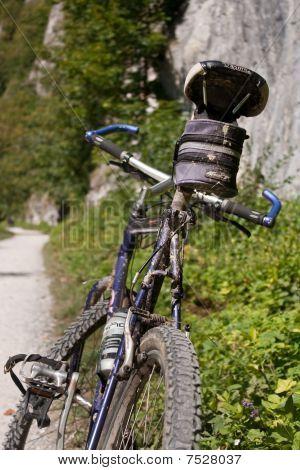 Polish Pieniny Mountain Biking