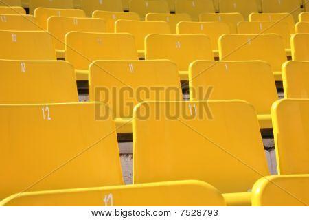 Tribune Stadium