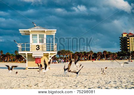 Lifeguard Tower At The Clearwater Beach. Florida.