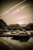picture of reining  - Yachts and boats near moorage at sunset in Reine village - JPG