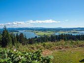 image of coxcomb  - A View of the Astoria Oregon Area from Coxcomb Hill the Location of the Astoria Column - JPG