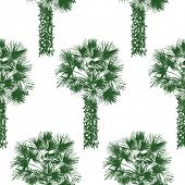 stock photo of washingtonia  - hand drawn palm tree seamless - JPG