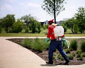 picture of planting trees  - Worker spreads chemicals on plants in park area - JPG