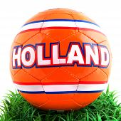 image of holland flag  - Dutch soccer ball for the world championship in grass - JPG