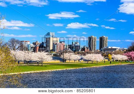 Boston, Massachusetts cityscape.