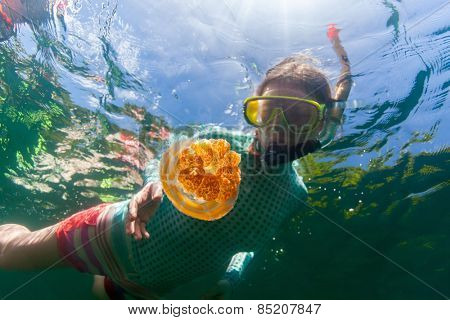 Underwater photo of tourist woman snorkeling with endemic golden jellyfish in lake at Palau. Snorkeling in Jellyfish Lake is a popular activity for tourists to Palau.