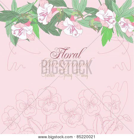 Floral Background with pink pansies